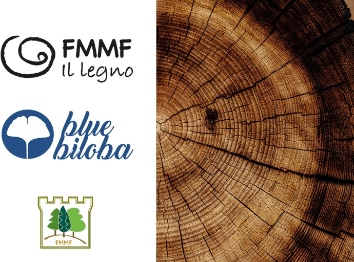 "New managers of the ""FMMF il legno"" brand"