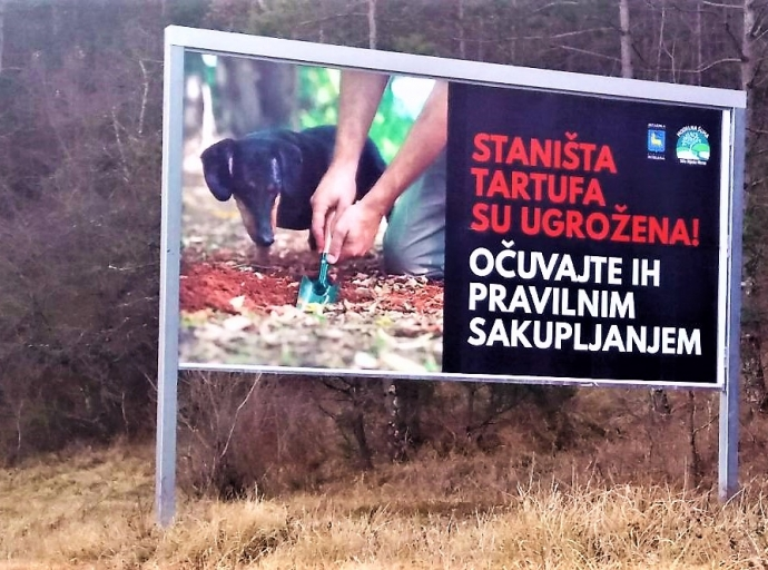 """Truffle habitats are endangered! Keep them properly harvested!"""