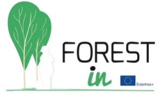 FOREST IN logo